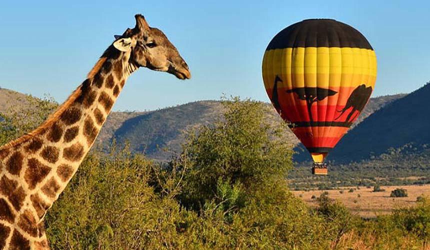 جاذبههای آفریقای جنوبی، سانسیتی