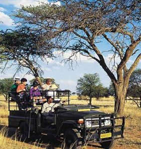 5 دلیل برای سفر به آفریقای جنوبی