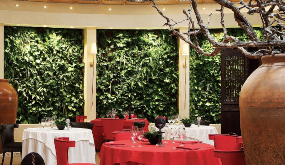 رستورانهای ژوهانسبوررگ