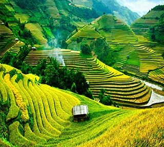 کشور ویتنام