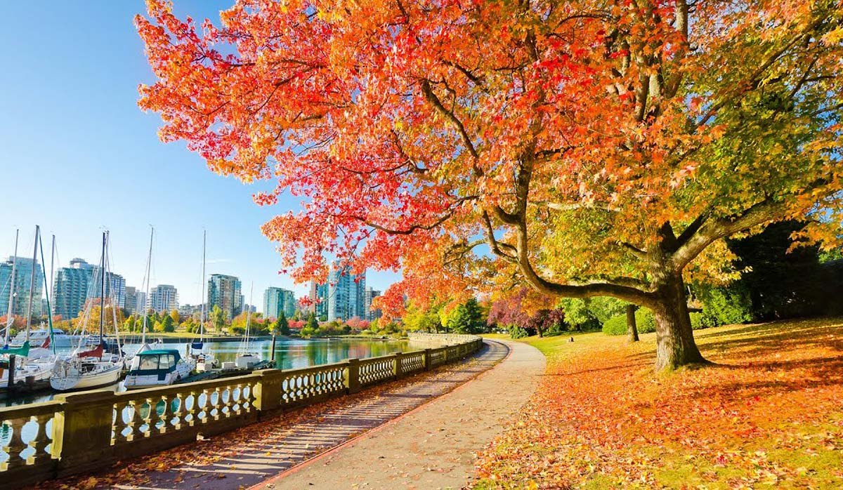 پارک اسیتنلی - ونکوور
