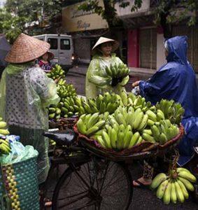 درهانوی، پایتخت زیبای ویتنام ازاین مکانها بازدید کنید