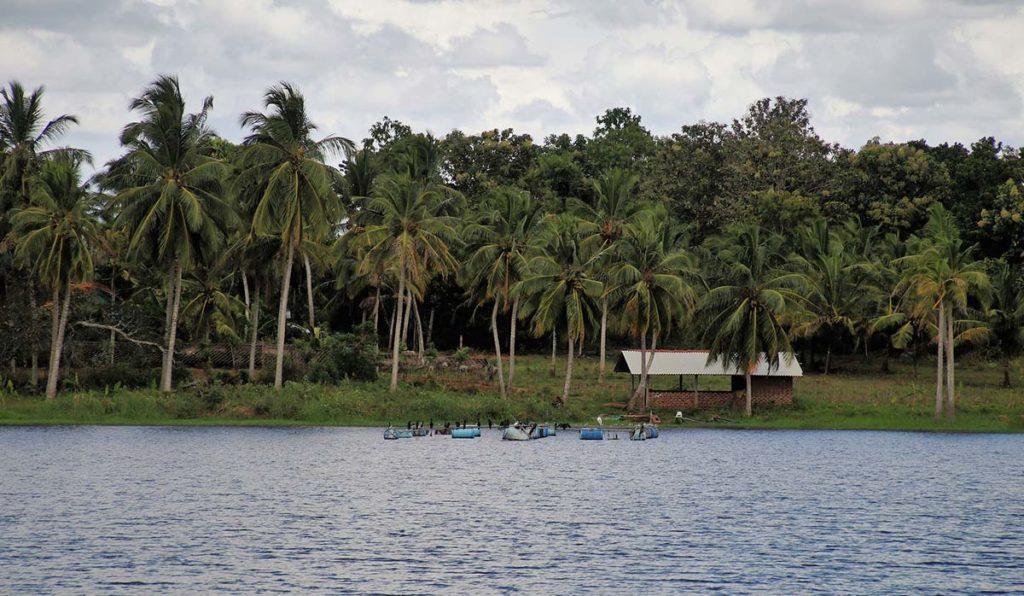 سواحل سزیلانکا