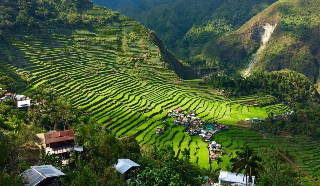 مزارع فیلیپین