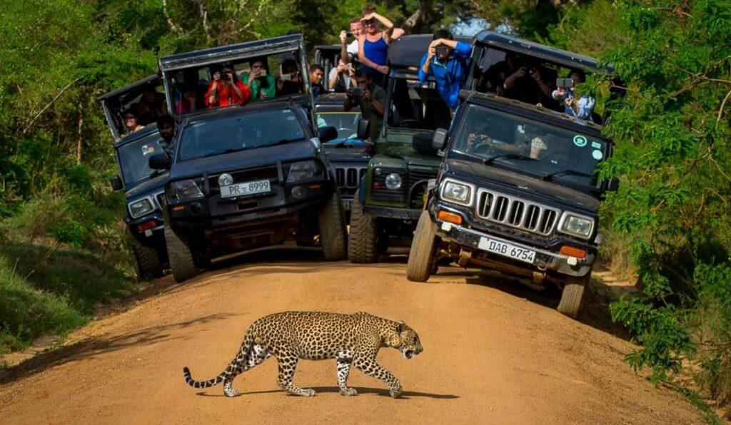 پارکهای ملی سریلانکا