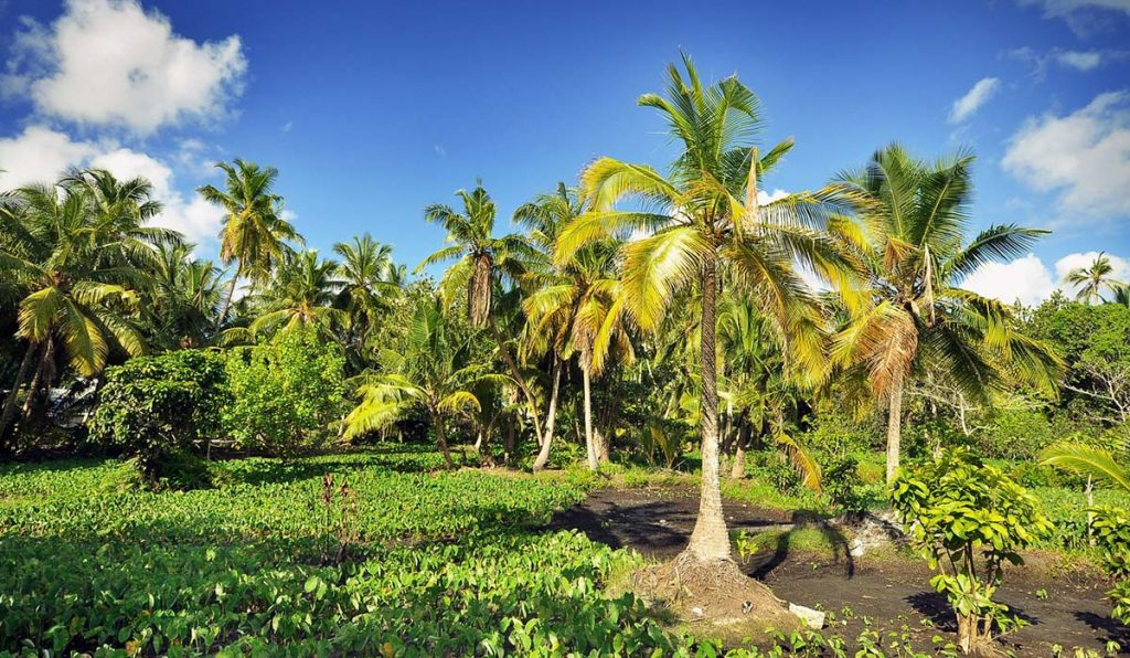 بهترین فصل سفر به مالدیو